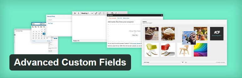 advanced-custom-fields-plugin-header