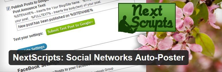 nextscripts-social-network-autoposter-plugin-header
