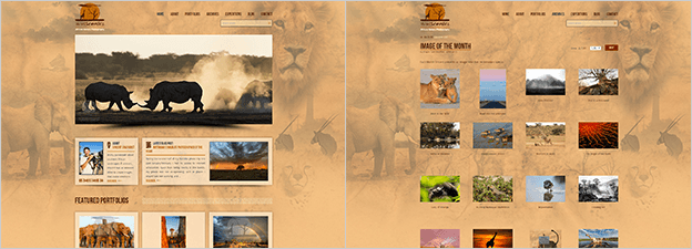 WP PhotoShelter matching template wity custom background (WildScenics)