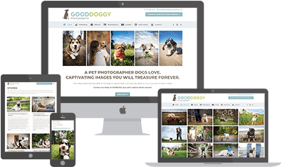 Good D. Photography website preview