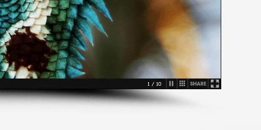 slideshow_controls_3