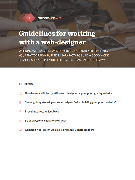 Guidelines for working with a web-designer (PDF) cover page