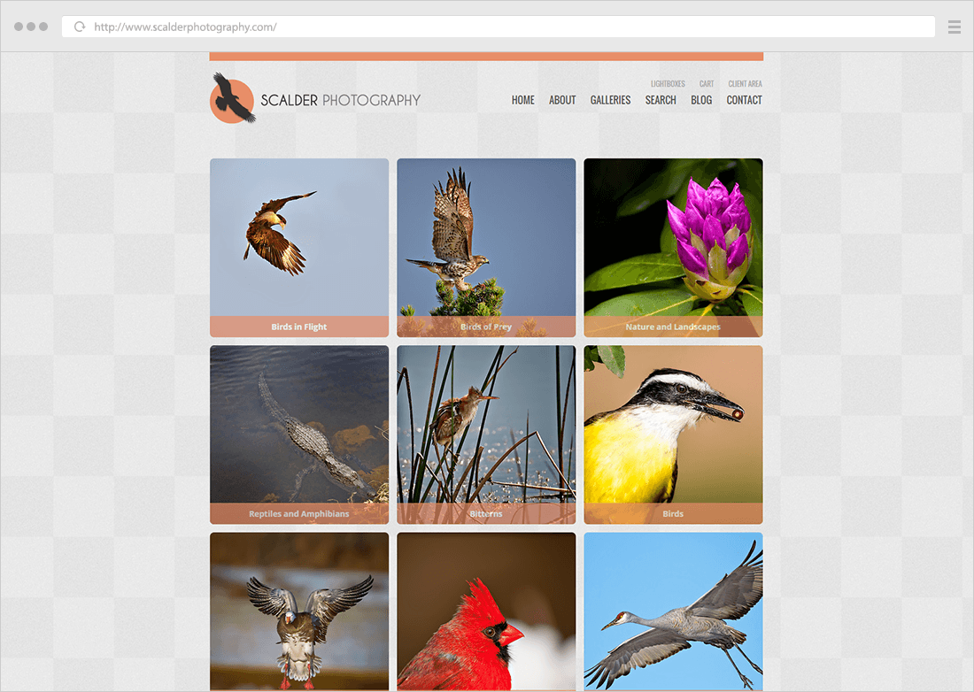 square thumbs photo website example 02