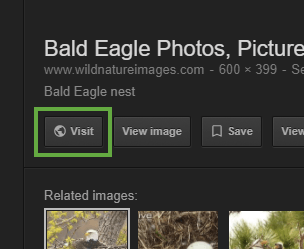 """Visit"" [website] button in Google Image search"