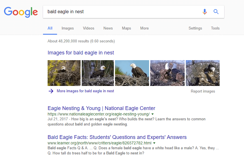 Example of Google SERP image pack feature
