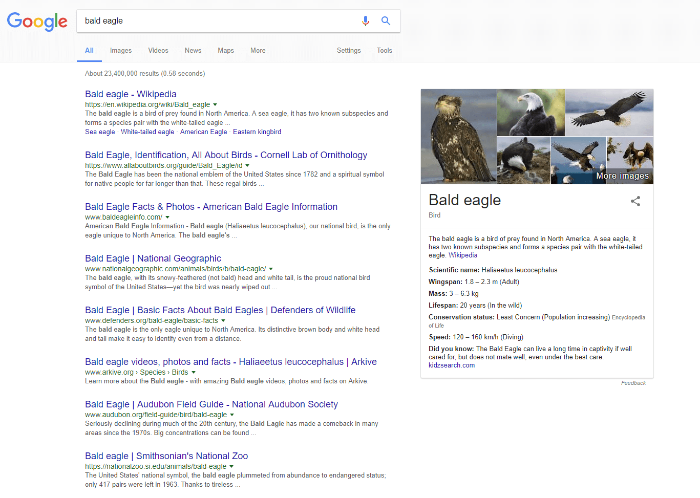 Example of Google SERP feature