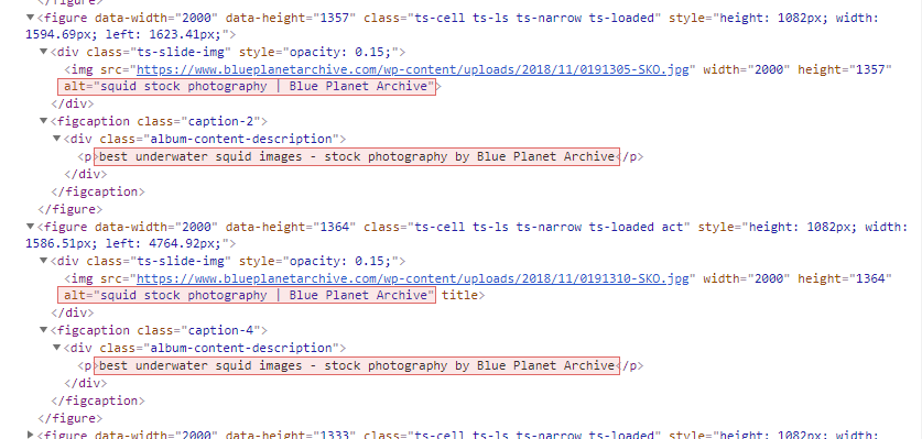 Source code of photography website showing duplicate image ALT tags and captions