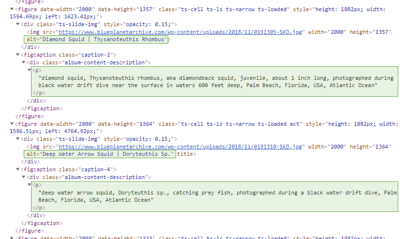 Source code of photography website showing unique / different ALT tags and captions