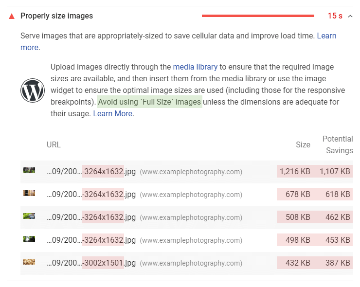 Google PageSpeed Insights - properly size images